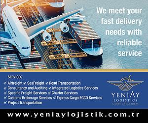 Dynasty Cargo